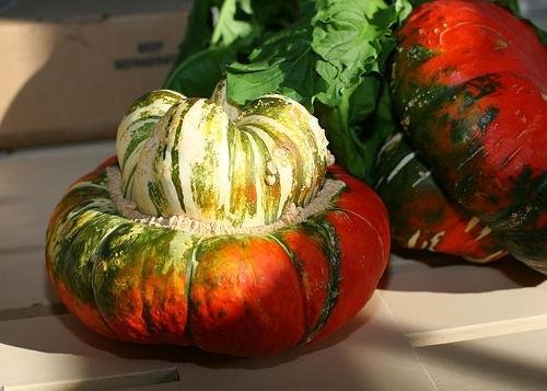 TURKS TURBAN PUMPKIN - HEIRLOOM VEGETABLE - 10 SEEDSPUMPKIN17
