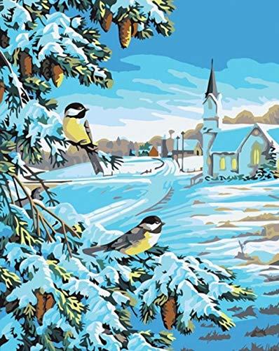 Zahlen Kleiner Vogel Geeignet Erwachsene Anfänger Kinder, Neue kreative Digitale Malerei Leinwand Kunstwerk Dekoration 16x20Zoll ()