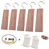 5 pack Zedernholz Blöcke mit Metallhaken gegen Motten,Dancepandas zum Aufhängen - Natürlicher Mottenschutz und Zedernholz Duftsäckchen [2 pack]