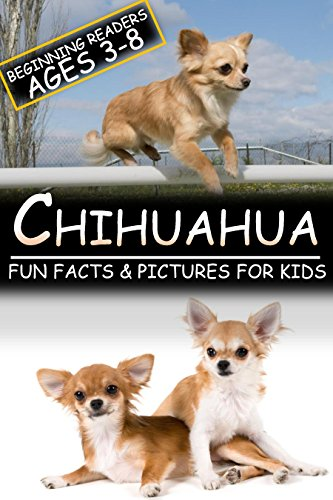 Chihuahua: Fun Facts & Pictures For Kids, Beginning Readers Ages 3-8 (English Edition)