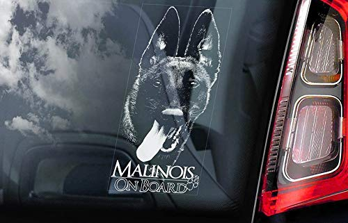 CELYCASY V05 Aufkleber für Autofenster mit Aufschrift Malinois on Board, belgisches Mechelse Herder Security K9 Home-security-sticker