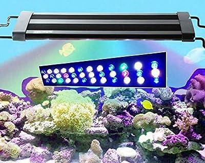 TUDIO Éclairage Aquarium, Aquarium Lumière Éclairage LED Aquarium Bleu Blanc Rouge Plein Spectrum, Reef Lumière Corail Poisson Aquarium Plantes Aquatiques Serre