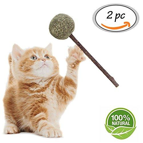 Toulifly Catnip Sticks, Giocattolo Gatto, gatto kaustaebchen Sticks Cura Dentale, 100% naturale participate l' odore naturale Cura Dentale bocca per gatti Cura Dentale