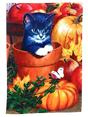 Katze Garten Flagge Fall Dekoration; Herbst Kätzchen mit Kürbisse, Blätter, und Äpfel; 30,5cm von 45,7cm