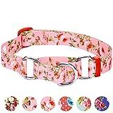 Blueberry Pet Sicherheitstraining Martingale Hundehalsband Frühlingsduft Inspirierte Rosenblüten Baby-Pink, M, Hals 37cm-50cm