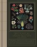 Botanical Inspiration : Nature in Art and Illustration
