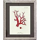 Dósfer 21922 - Cuadro decorativo, Corales rojos, 34 x 40 cm