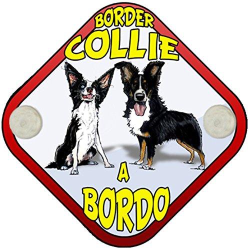 Placa bebé a bordo Border Collie a bordo perro a bordo
