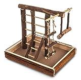 Livivo® in legno naturale parco giochi uccello Budgie canarino Ladder Swing Perch Pet Fun Small