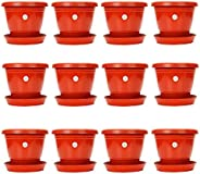 Kraft Seeds Kriti Kalash Planter Pot with Bottom Plate/Tray (8 inch, Red) - Pack of 12 Pots
