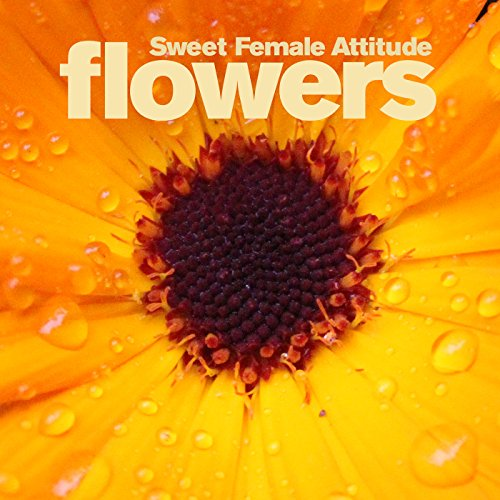 Flowers (Sunship Remix)