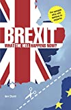 Brexit: What the Hell Happens Now?: Everything You Need to Know about Britain's Divorce from Europe