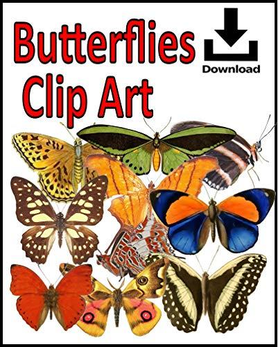 Butterflies Clip Art (English Edition)