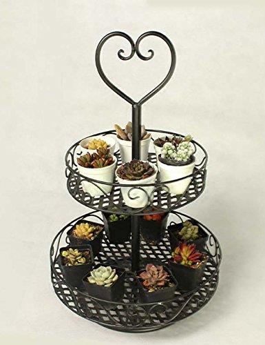 soporte-del-pote-de-flor-estilo-europeo-flor-creativa-estantes-salon-balcon-hierro-flor-pot-rack-coc