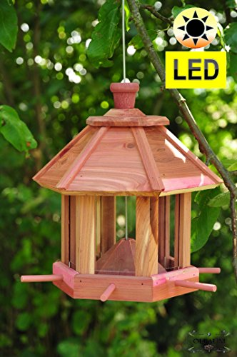 Bird Feeding House with Feed Dispenser and Dispenser Large Weather Resistant Large Feeding Area,/, Wood 3D Bird Feeder with Seed Feeder Large Food Surface
