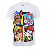 Best Paw Paw Shirts - Paw Patrol Boy's Windows T-Shirt, White, 5-6 Years Review