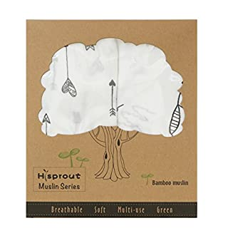 Hisprout Unisex Super Soft 70% Bamboo & 30% Cotton Muslin Swaddle Blanket Set, 2 Packs, 47
