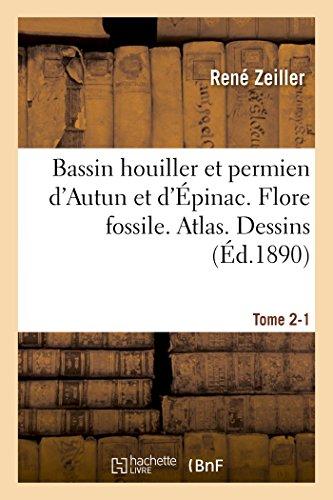 Bassin houiller et permien d'Autun et d'Épinac. Flore fossile Atlas Tome 2-1 par René Zeiller