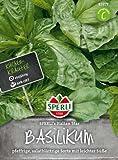 Sperli Basilikum SPERLI´s Italian Star
