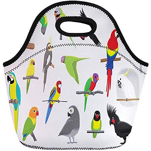 Lunch Taschen,Fliegen-Verschiedene Papageien-Karikatur-Kakadu-Sittich-Ara-Vogel-Nymphensittich-Wiederverwendbare Kühltaschen Isolierte Thermische Picknick-Handtasche