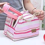 iDealhere(TM) Mini Picknick Isoliertasche Camping Kühltasche Tasche Picknicktasche Für Mittagessen (rosa)