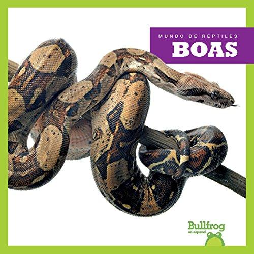 Boas (Boa Constrictors) (Mundo De Reptiles / Reptile World) por Imogen Kingsley
