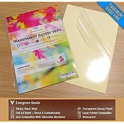 10 láminas autoadhesivas satinadas de vinilo, A4, aptas para impresoras de inyección de tinta, de alta calidad, transparentes