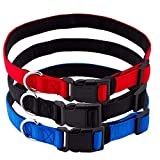 Pets Lovers Club Padded Dog Collar | Collar Para Perros | Pack of 3 Color Red, Blue, Black | Small