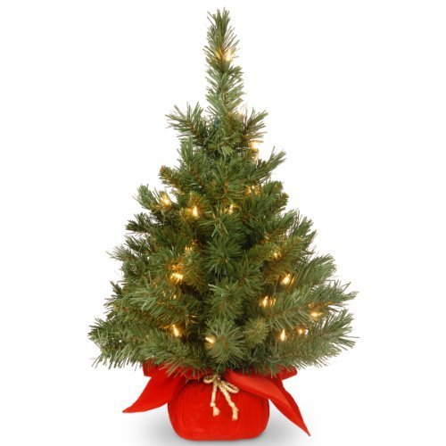 Red Fir, Red Lights (National Tree MJ3-24RDLO-1 Majestic Fir Tree with 35 Clear Lights and Red Cloth Bag, 24-Inch by National Tree)