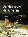 Auf den Spuren der Ameisen: Die Entdeckung einer faszinierenden Welt - Bert Hölldobler, Edward O. Wilson
