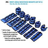 Best Adjustable Ankle Weights - Adjustable Ankle Wrist Weight Strength Training Exercise Gym Review