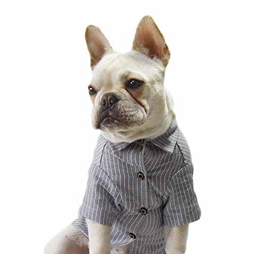 Streifen Hemd für Welpen Kleine Hunde Atmungsaktiv Hundekostüm Jersey T-Shirt Baumwolle Dog Tee Shirt Hundegeschirr Frühjahr Sommer Poodle French Bulldog (M, Blau)
