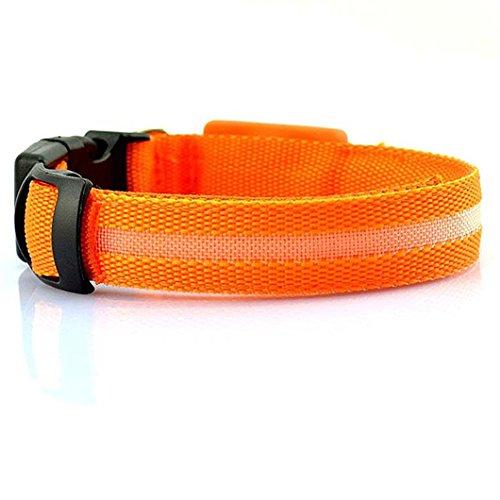Safeinu lumière LED Pet Pendentif Collier de chien, orange