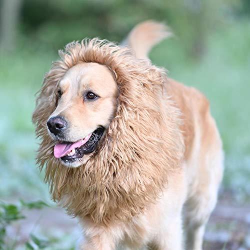 Onmygogo Löwe Mähne Perücke für Hunde mit Ohren, Funny Pet Kostüme für Halloween Weihnachten, Size M, braun (Edle König Kostüm)