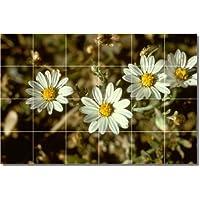 Fiori foto Backsplash tile Mural 30. 43,2x 64,8cm utilizzando (24) 4.25x 4.25piastrelle in ceramica.