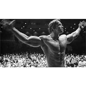 Arnold Schwarzenegger (43inch x 24inch / 107cm x 60cm) Silk Print Poster - Seide Plakat - A629FD