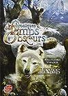 Chroniques des Temps Obscurs, Tome 1 - Frère de loup