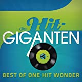 Die Hit Giganten - Best Of One Hit Wonder [Explicit]