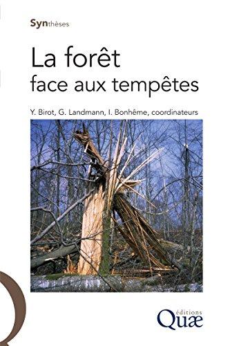 La forêt face aux tempêtes (Synthèses) par Ingrid Bonhême