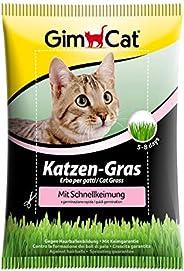 GimCat kattengras met snelkieming - zaadmengsel van gecontroleerde veldteelt voor snelle kweek - 1 zak (1 x 10