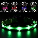 Pawow LED Leuchthalsband Hunde Leuchtend, Verstellbar USB Hunde Halsband Wiederaufladbar für Mittelgroße Grosse Hunde(Klein, Grün)