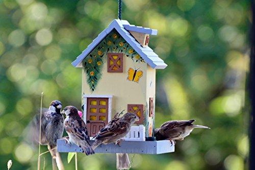 dobar 25119FSC Buntes Vogelhaus Western zum Aufhängen aus Holz, Deko Futterhaus Sommer, bunt - 4