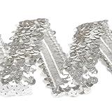 1m Borte mit Pailletten elastisch 30mm silber von der Rolle