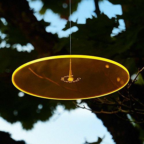 Cazador-del-sol ® vitrail jaune