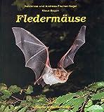Fledermäuse - Heiderose Fischer-Nagel