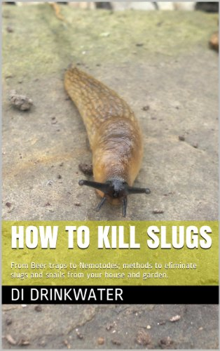 how-to-kill-slugs-from-beer-traps-to-nemotodes-methods-to-eliminate-slugs-and-snails-from-your-house