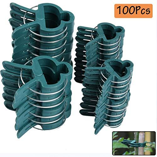 TIMESETL 100Stück Pflanzenclips Stabile Clips Pflanzenklammern, 2 Größe Gartenpflanze Clips wiederverwendbar für kleine & große Triebe Spaliere Rosenbögen Rankhilfen -