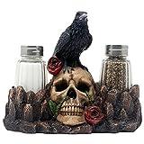 Bone Chillen Raven, auf Menschlicher Schädel Salz und Pfeffer Shaker Set mit dekorativen Display stehen Figur für Scary Halloween Dekorationen oder Mittelalter & Gothic Küche Tisch Decor Spooky Fantasy Geschenke