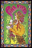 Pink Floyd Bob Masse Tourposter Poster Standard