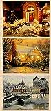 3 Stück Set LED Wandbild beleuchtete Winterlandschaft 30cm x 40cm Bild